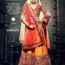 Bridal Lehenga Choli 101