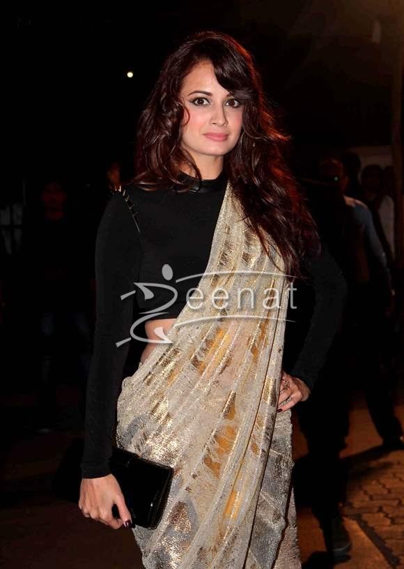 Dia Mirza at Idea Filmfare Awards 2014