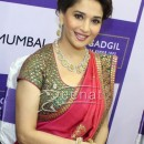 Madhuri Dixit In Designer Saree