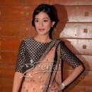 Amrita Rao In Bollywood Saree