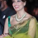 Bipasha Basu In Bollywood Saree