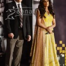 Chitrangada Singh at Reliance Digital Awards 2014