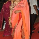 Deepika In Designer Saree