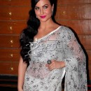 Elli Avram In White Saree