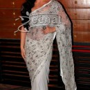 Elli Avram In Saree