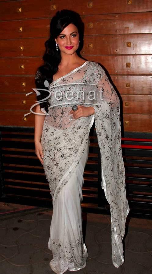 Elli Avram at Filmfare Awards 2014
