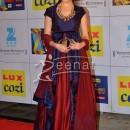Genelia D'souza at mumbai zee cine award 2014