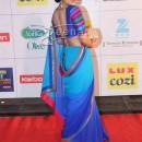 Pallavi Sharda In Blue Saree