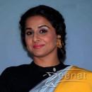 Vidya Balan In Grey Saree