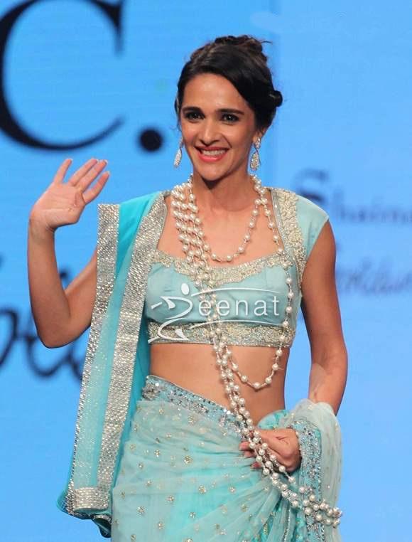 Tara Sharma In Saree