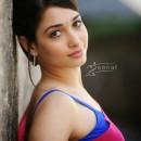 Tamanna Bhatia Saree Styles3