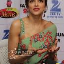 Deepika Padukone Sarees #1