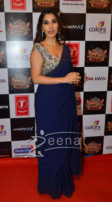 Sophie Chaudhary In Deep Blue Saree