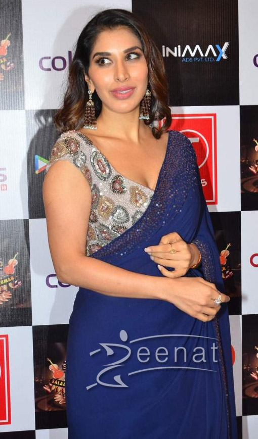 Sophie Chaudhary In Deep Blue Saree 4