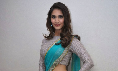 Vaani Kapoor below navel Saree stills